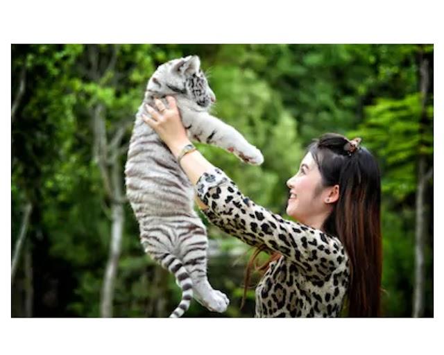 About Wildlife Biology