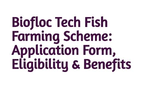 Odisha Biofloc Tech Fish Farming Scheme