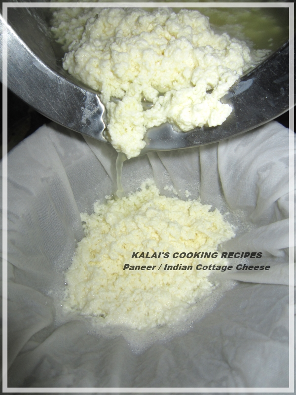 How To Make Paneer | Indian Cottage Cheese | Home Made Panner | Home ...