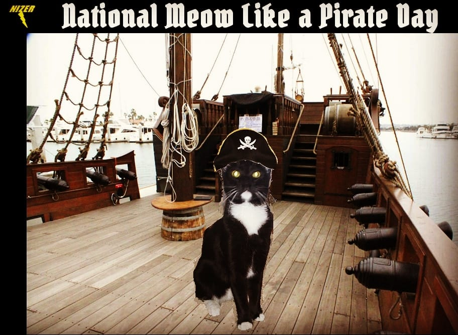 National Meow Like a Pirate Day