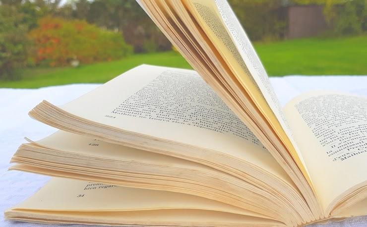 lecture livre manies