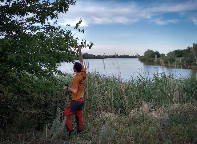 Marcel la cules de dude, Lacul Latime