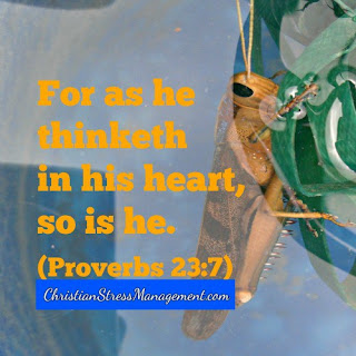 For as a person thinketh in their heart, so are they. (Proverbs 23:7)