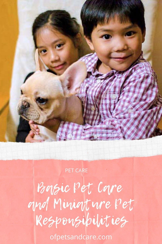 Basic Pet Care and Miniature Pet Responsibilities
