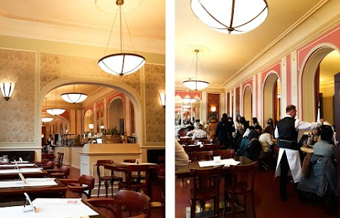 Dopoledne v kavárně - Café Louvre