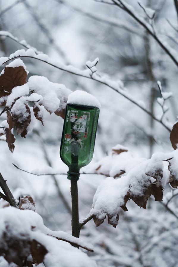 Blog + Fotografie by it's me! - Draussen - Frau Frieda sucht Schnee, verschneite Jägermeisterflasche auf einem Zweig