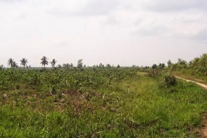 Hukum –Hukum  Ihyaa-Ul Mawat Atau Menghidupkan Bumi Mati