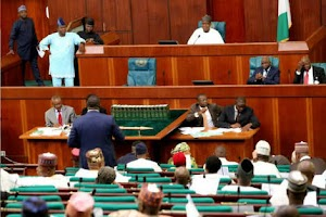 House of Reps In The Bid To Stop Excessive Electricity Charges