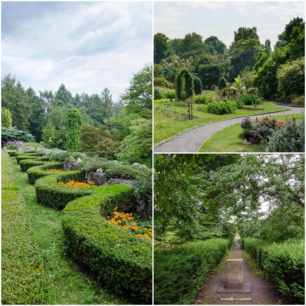 ogród botaniczny UJ