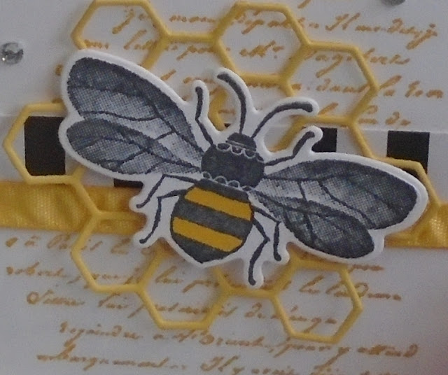Craftyduckydoodah!, Honey Bee, Hopping Around The World, Spring / Summer 2020, Supplies available 24/7 from my online store, Susan Simpson UK Independent Stampin' Up! Demonstrator