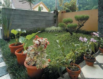 menata taman kecil depan rumah