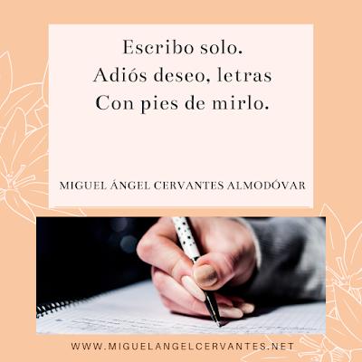 poema-escribo-solo-miguel-angel-cervantes