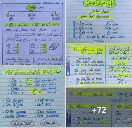شرح  دروس اللغة الفرنسية بالعربية للسنة الرابعة و الخامسة ابتدائي