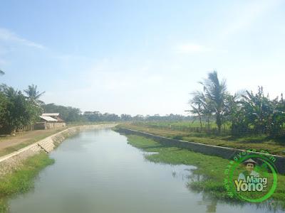 FOTO 2 : Endapan Lumpur, Sungai Ciasem Pagaden Barat