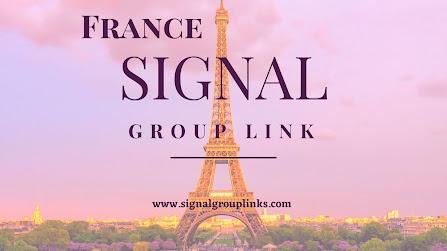 Signal group Link France