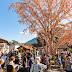 11ª Osterfest bate recorde de público e recebe 55 mil pessoas nos primeiros dias