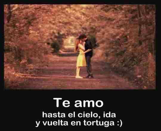 Bellas Frases Cortas De Amor Para Enamorar Pensamientos De Amor