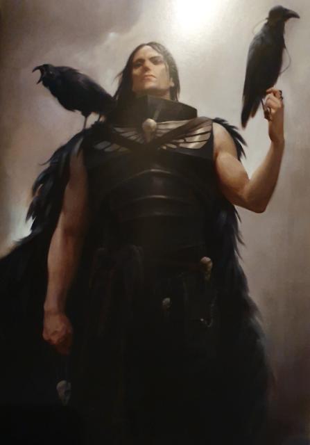 Corvus Corax joven