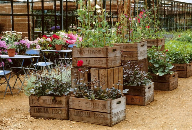 Dishfunctional designs vintage wood crates upcycled for Dishfunctional designs garden