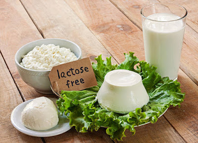 Lactose and digestion