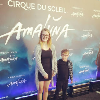 cirque, amaluna