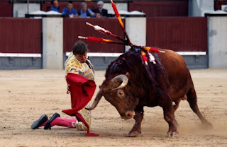 Μαδρίτη: Ταύρος τραυμάτισε σοβαρά ταυρομάχο στην αρένα (Εικόνες)