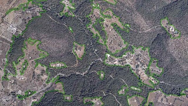 Ανάρτηση δασικού χάρτη περιοχής Π.Ε. Αργολίδας και πρόσκληση υποβολής αντιρρήσεων