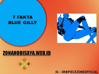 7 Fakta Blue Gilly One Piece, Suku Ras Kaki Panjang Yang Ikut Pertandingan Coridda Colosseum