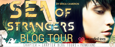 http://www.chapter-by-chapter.com/tour-schedule-sea-of-strangers-by-erica-cameron/