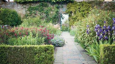 Iris históricos en los jardines de Sissinghurst Castle