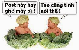Ảnh chế comment facebook