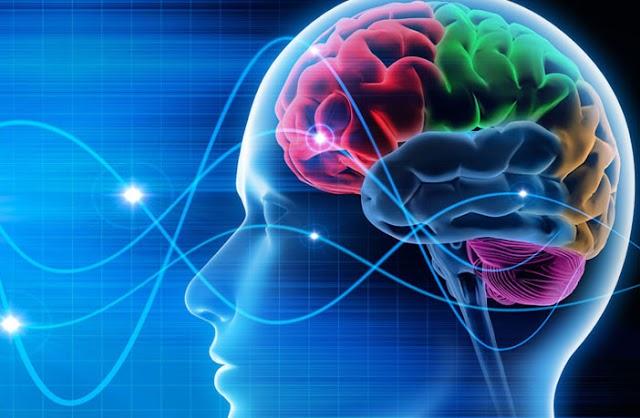 Πώς ένα παράσιτο μπορεί να επανασυνδέσει τον εγκέφαλό σας και να αλλάξει τη συμπεριφορά σας