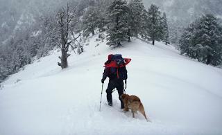 Καλό χειμώνα - Επεσε το πρώτο χιόνι στον Ολυμπο!