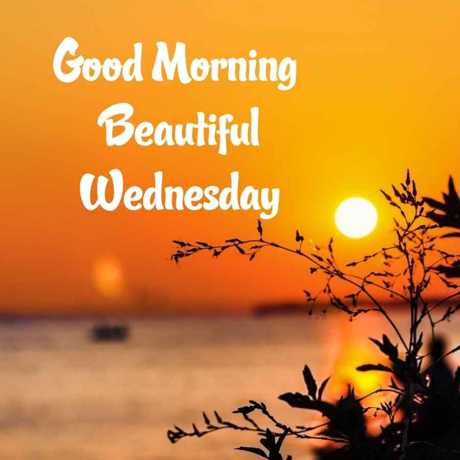 happy wednesday good morning wishes