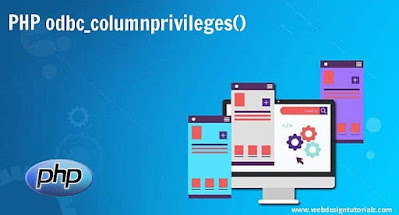 PHP odbc_columnprivileges() Function