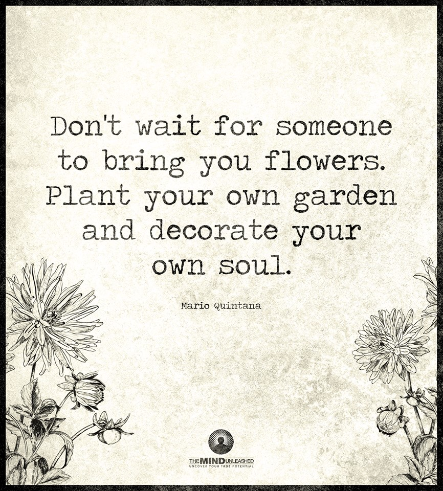 Dont Wait For Someone To Bring You Flowers Plans Your Own Garden