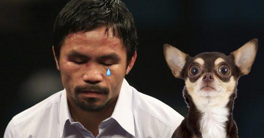 Se comió a su perro: la triste historia de Manny Pacquiao