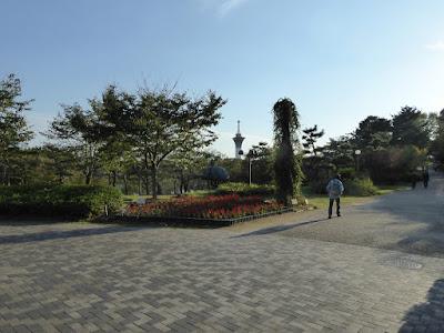花博記念公園鶴見緑地 サルビア