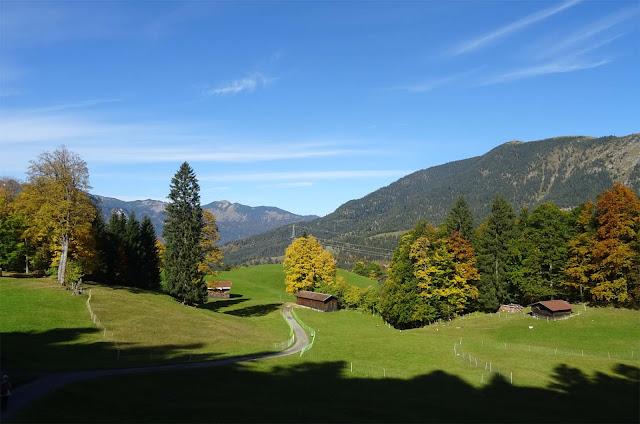 Wanderweg nach Wamberg, Tannen und Laubbäume
