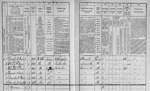 """Slovakia Census, 1869,"" images, FamilySearch (https://familysearch.org/pal:/MM9.3.1/TH-1961-28480-19928-12?cc=1986782 : accessed 7 March 2016)."