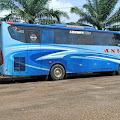 Bus ANS Lakalantas di Km.5 Jalan Lintas Tebo-Bungo Bus ANS Tabrak Motor
