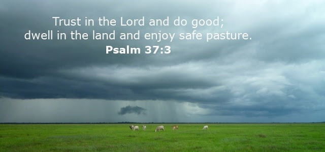 Trust in the Lord and do good; dwell in the land and enjoy safe pasture.