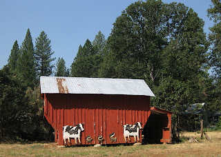 Red barn adorned with three skunks flanked by two cows.