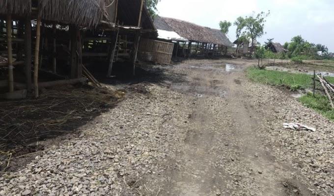 Soal Peningkatan Jalan Gembor-Lamaran, DPUPR Kab. Serang Abaikan Skala Prioritas Pembangunan