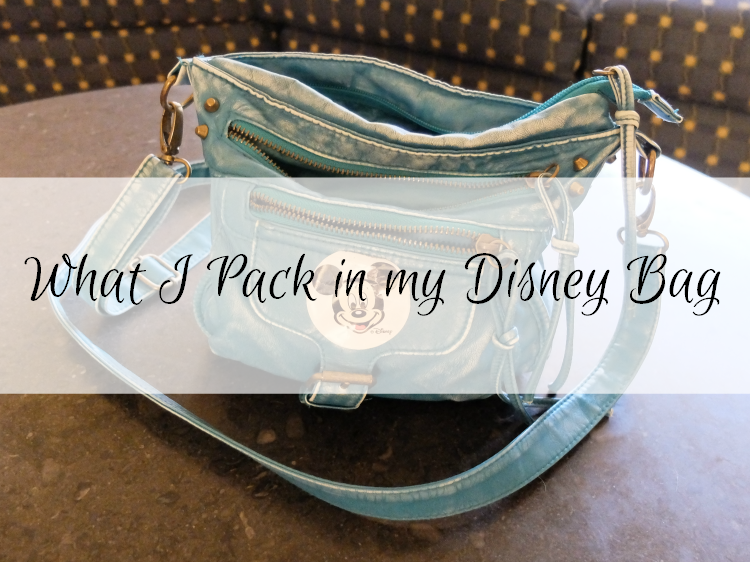 Sweet Turtle Soup - What I Pack in my Disney Bag