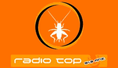 Radio Top 91.3 FM