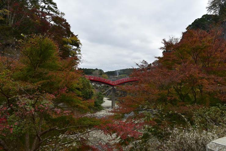 養老渓谷を跨ぐ飛翔するカモメを思わせる赤い太鼓橋の観音橋