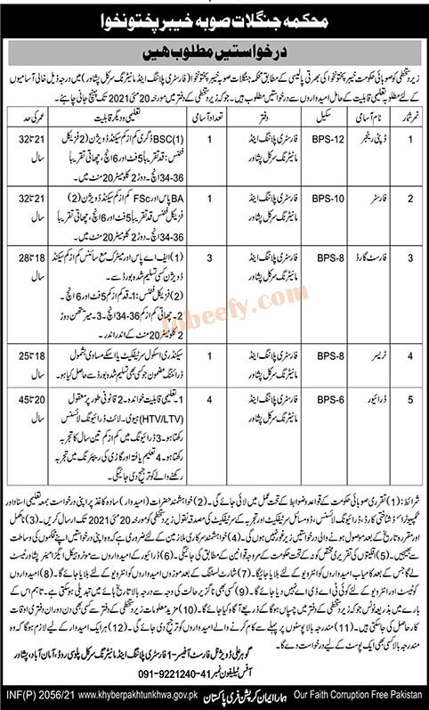 Jobs in Pakistan Forest Department Jobs 2021