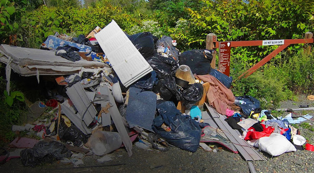 How to Properly Utilize the Junk Removal Greensboro NC Services