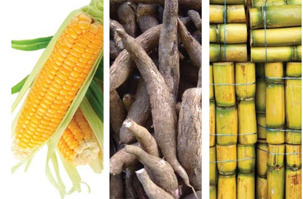 Bioetanol, Bahan Bakar Basis Biomassa Pengganti Bensin